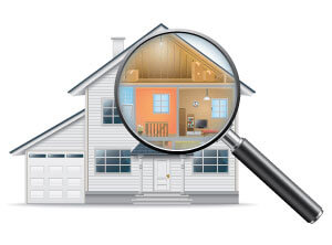 Termite Inspection Rehoboth Beach, DE