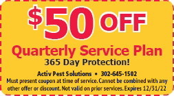 $50 Quarterly Plan Coupon