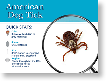Problems with Tick