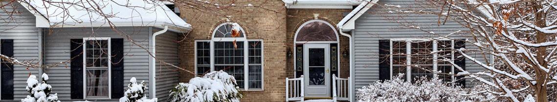 Winter Pest Control Services